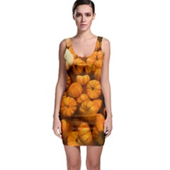 Pumpkins Tiny Gourds Pile Bodycon Dress