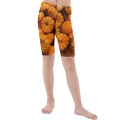 Pumpkins Tiny Gourds Pile Kids  Mid Length Swim Shorts by bloomingvinedesign
