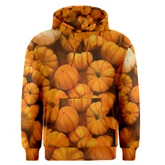 Pumpkins Tiny Gourds Pile Men s Pullover Hoodie