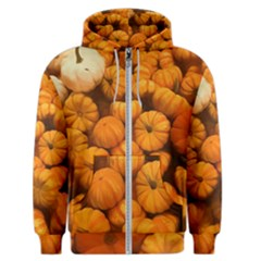 Pumpkins Tiny Gourds Pile Men s Zipper Hoodie