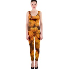 Pumpkins Tiny Gourds Pile One Piece Catsuit