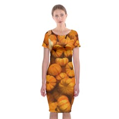 Pumpkins Tiny Gourds Pile Classic Short Sleeve Midi Dress