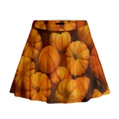 Pumpkins Tiny Gourds Pile Mini Flare Skirt