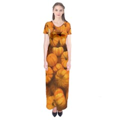 Pumpkins Tiny Gourds Pile Short Sleeve Maxi Dress