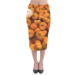 Pumpkins Tiny Gourds Pile Velvet Midi Pencil Skirt