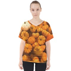 Pumpkins Tiny Gourds Pile V Neck Dolman Drape Top
