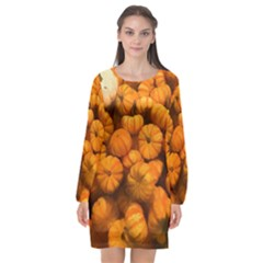 Pumpkins Tiny Gourds Pile Long Sleeve Chiffon Shift Dress