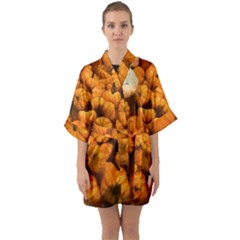 Pumpkins Tiny Gourds Pile Quarter Sleeve Kimono Robe