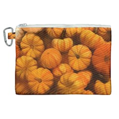 Pumpkins Tiny Gourds Pile Canvas Cosmetic Bag (xl)