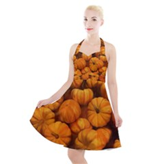 Pumpkins Tiny Gourds Pile Halter Party Swing Dress