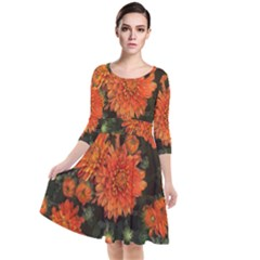 Orange Fall Mums Quarter Sleeve Waist Band Dress