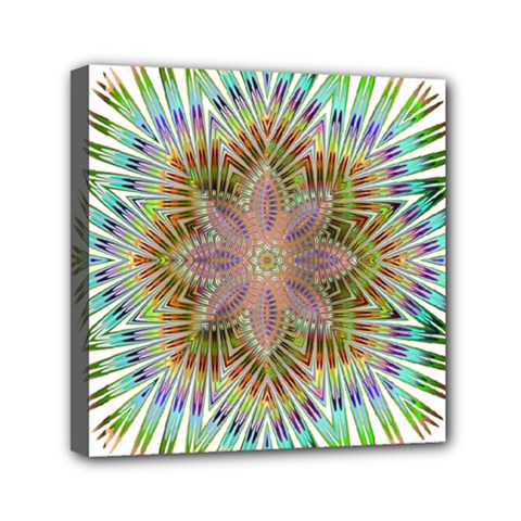 Star Flower Glass Sexy Chromatic Symmetric Mini Canvas 6  X 6  (stretched) by Jojostore