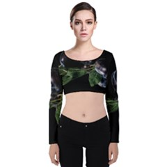 Plums Photo Art Fractalius Fruit Velvet Long Sleeve Crop Top by Sapixe