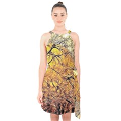Summer Sun Set Fractal Forest Background Halter Collar Waist Tie Chiffon Dress