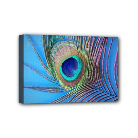 Peacock Feather Blue Green Bright Mini Canvas 6  X 4  (stretched) by Jojostore