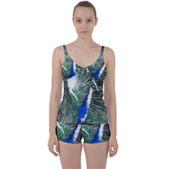 Animal Photography Peacock Bird Tie Front Two Piece Tankini