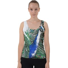 Animal Photography Peacock Bird Velvet Tank Top