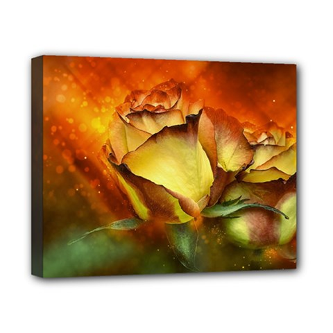 Rose Flower Petal Floral Love Canvas 10  X 8  (stretched)