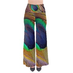 Bird Feather Background Nature So Vintage Palazzo Pants by Sapixe
