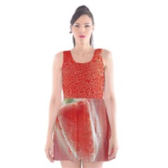 Red Pepper And Bubbles Scoop Neck Skater Dress