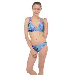 Butterfly Vector Background Classic Banded Bikini Set