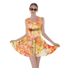 Monotype Art Pattern Leaves Colored Autumn Skater Dress