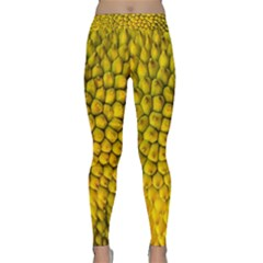 Jack Shell Jack Fruit Close Classic Yoga Leggings by Jojostore