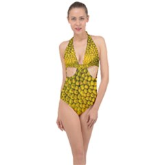 Jack Shell Jack Fruit Close Halter Front Plunge Swimsuit