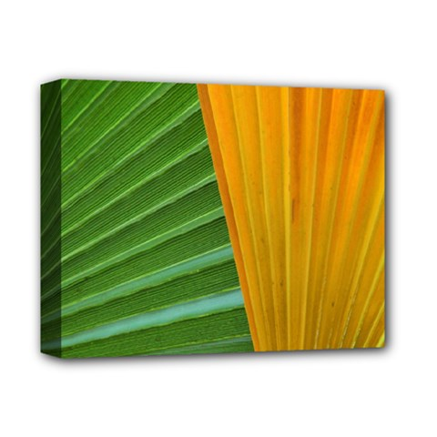 Pattern Colorful Palm Leaves Deluxe Canvas 14  X 11  (stretched) by Jojostore