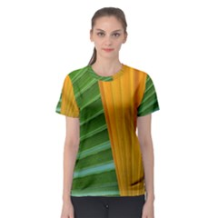 Pattern Colorful Palm Leaves Women s Sport Mesh Tee by Jojostore