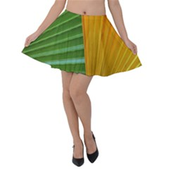 Pattern Colorful Palm Leaves Velvet Skater Skirt