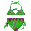 Green And Purple Fractal Kids  Classic Bikini Set View1