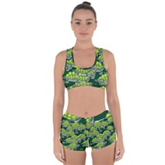 Seamless Tile Background Abstract Turtle Turtles Racerback Boyleg Bikini Set