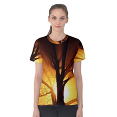 Rays Of Light Tree In Fog At Night Women s Cotton Tee