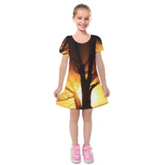 Rays Of Light Tree In Fog At Night Kids  Short Sleeve Velvet Dress