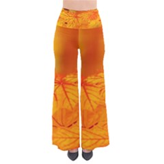 Bright Yellow Autumn Leaves So Vintage Palazzo Pants