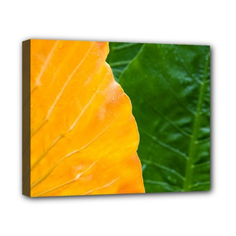Wet Yellow And Green Leaves Abstract Pattern Canvas 10  X 8  (stretched)