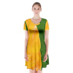 Wet Yellow And Green Leaves Abstract Pattern Short Sleeve V Neck Flare Dress