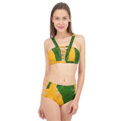 Wet Yellow And Green Leaves Abstract Pattern Cage Up Bikini Set