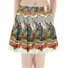 Historical Coat Of Arms Of Iowa Pleated Mini Skirt by abbeyz71