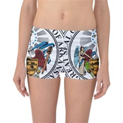 State Seal Of Arkansas Reversible Boyleg Bikini Bottoms