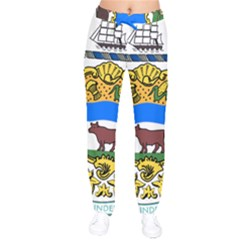 Delaware Coat Of Arms Velvet Drawstring Pants