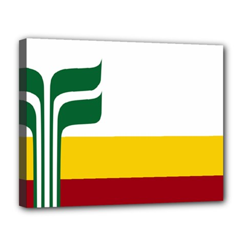 Flag Of Franco Manitobans Canvas 14  X 11  (stretched)