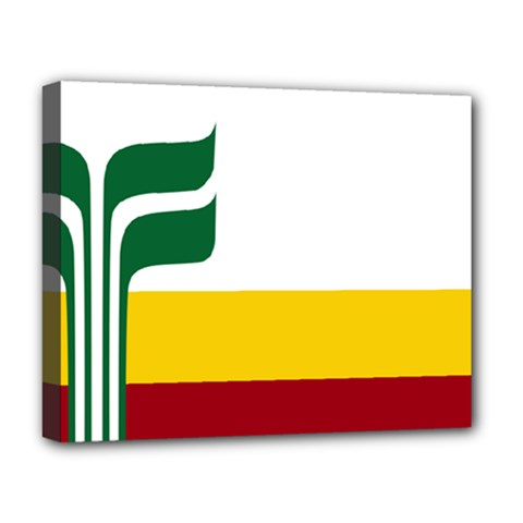 Flag Of Franco Manitobans Deluxe Canvas 20  X 16  (stretched) by abbeyz71