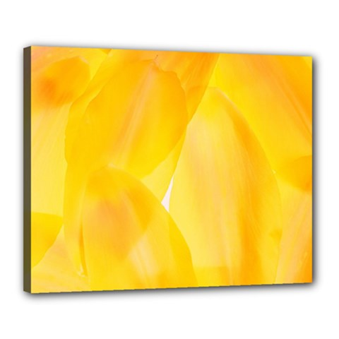 Yellow Pattern Painting Canvas 20  X 16  (stretched) by Jojostore