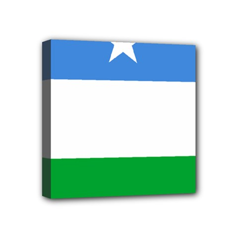 Flag Of Puntland Mini Canvas 4  X 4  (stretched)