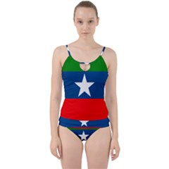 Flag Of Ogaden National Liberation Front Cut Out Top Tankini Set
