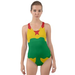 Flag Of Oromo Liberation Front Cut Out Back One Piece Swimsuit