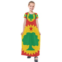 Flag Of Oromo Liberation Front Kids  Short Sleeve Maxi Dress by abbeyz71