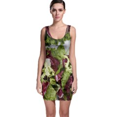 Salad Lettuce Vegetable Bodycon Dress by Sapixe